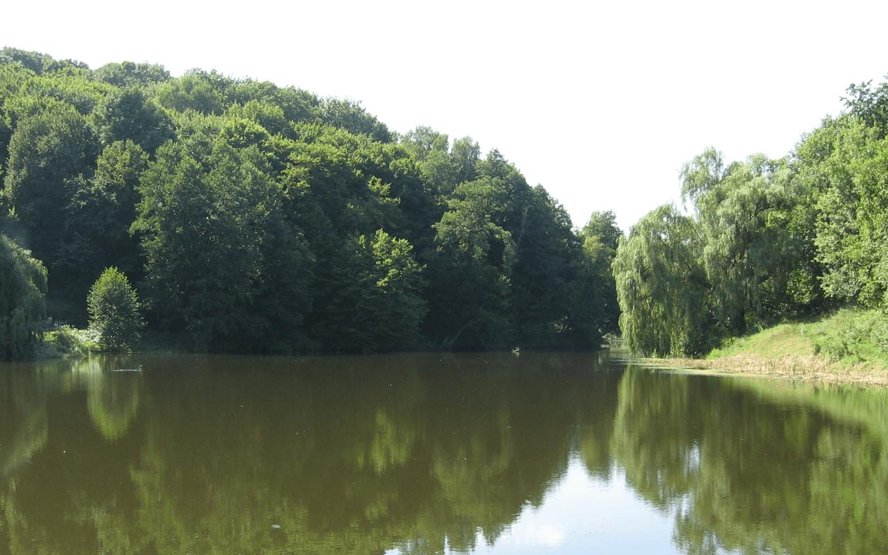 Китаево Киев
