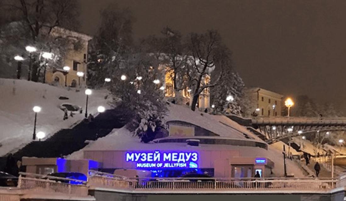 Музей медуз Київ